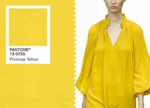 Модныe цвета 2017. Primrose Yellow (Желтая примула) Фото и советы: Как стать самой красивой!